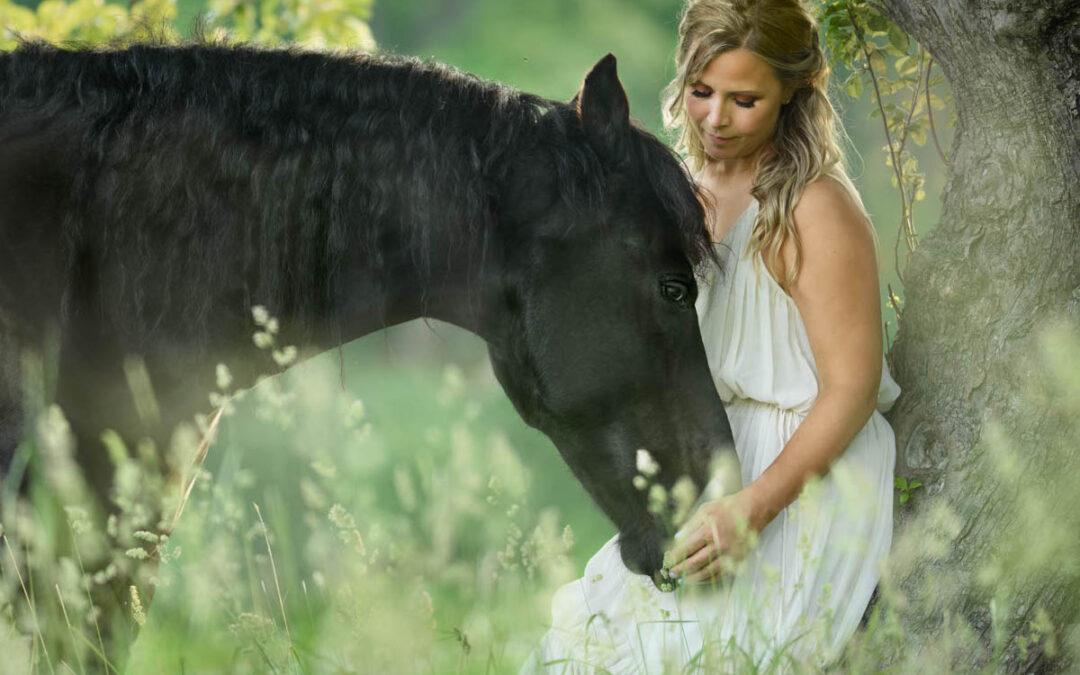 Hästen och du