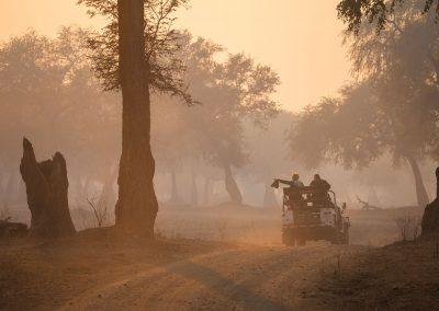 Spanar från jeepen i Zimbabwe