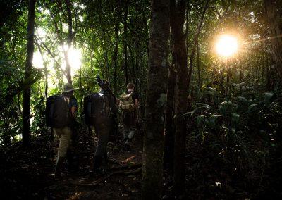 På väg djupare in i regnskogen...
