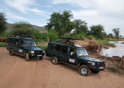 Safari i Kenya