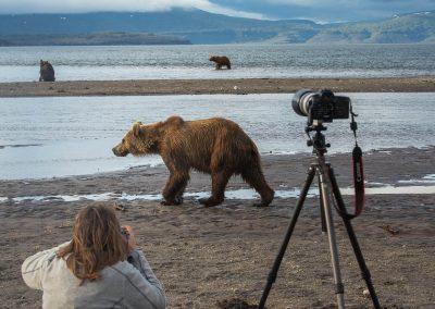 Wildlifefoto när det är som bäst