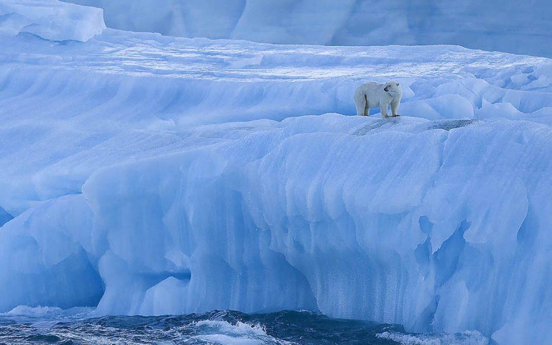 Isbjörnens Rike
